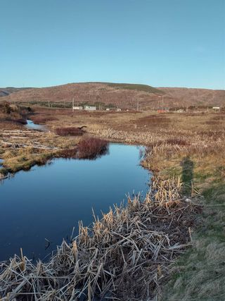 Photo 16: Lot 1 Old Cabot Trail Road in Point Cross: 306-Inverness County / Inverness & Area Vacant Land for sale (Highland Region)  : MLS®# 202111357