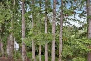 """Photo 22: 5 20848 DOUGLAS Crescent in Langley: Langley City Townhouse for sale in """"brookside terrace"""" : MLS®# R2611248"""