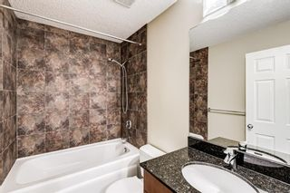 Photo 24: 6416 Larkspur Way SW in Calgary: North Glenmore Park Detached for sale : MLS®# A1127442