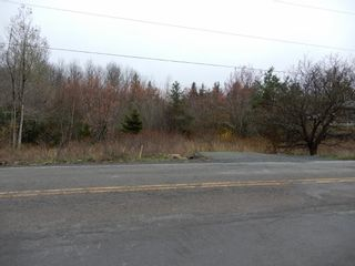 Photo 6: Highway 4 in Salt Springs: 108-Rural Pictou County Vacant Land for sale (Northern Region)  : MLS®# 202111268