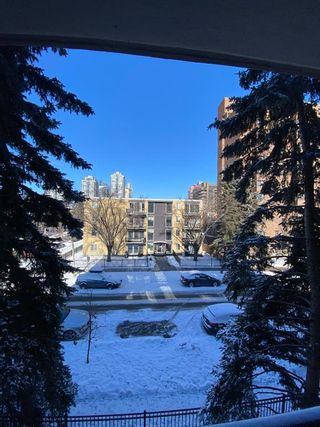 Photo 14: 302 1033 15 Avenue SW in Calgary: Beltline Apartment for sale : MLS®# A1075772