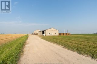 Photo 5: 1358 COUNTY RD 27 in Lakeshore: Agriculture for sale : MLS®# 21011631