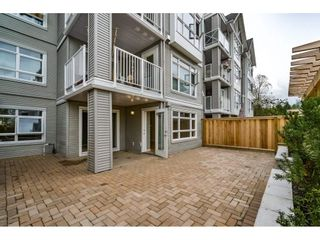 """Photo 13: 103 3136 ST JOHNS Street in Port Moody: Port Moody Centre Condo for sale in """"SONRISA"""" : MLS®# R2105055"""