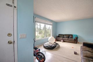 Photo 9: 51 Erin Park Close SE in Calgary: Erin Woods Detached for sale : MLS®# A1138830