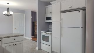 Photo 4: 295 NICTAUX Road in Nictaux: 400-Annapolis County Residential for sale (Annapolis Valley)  : MLS®# 201904400