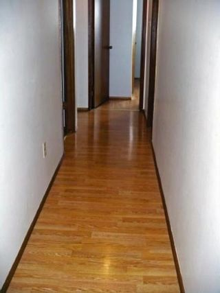 Photo 6: 74 HERRON RD: Residential for sale (Maples)  : MLS®# 2905010