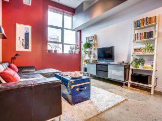 Photo 16: 1031 155 Dalhousie Street in Toronto: Church-Yonge Corridor Condo for sale (Toronto C08)  : MLS®# C3340196