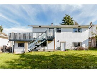 Photo 6: 1753 Kenmore Rd in VICTORIA: SE Lambrick Park House for sale (Saanich East)  : MLS®# 695471