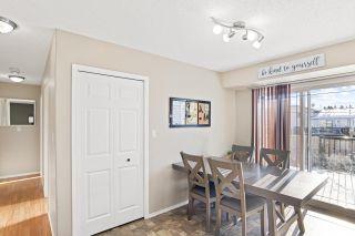 Photo 5: 6109 54 Avenue: Cold Lake House for sale : MLS®# E4228701