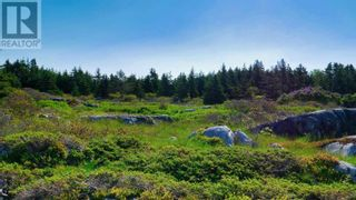 Photo 22: Lot Maiden Hair Island in Lahave Islands: Vacant Land for sale : MLS®# 202114713