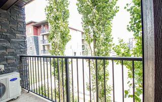 Photo 18: 215 1060 McConachie Boulevard in Edmonton: Zone 03 Condo for sale : MLS®# E4257715