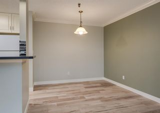 Photo 11: 110 727 56 Avenue SW in Calgary: Windsor Park Apartment for sale : MLS®# A1133912