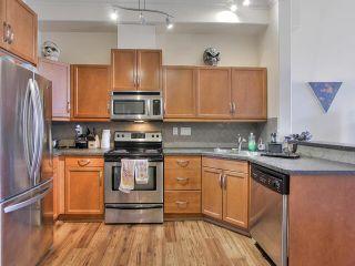 Photo 9: 427 10121 80 Avenue in Edmonton: Zone 17 Condo for sale : MLS®# E4227613