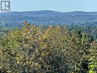 Photo 5: - Saint David Ridge in St. Stephen: Vacant Land for sale : MLS®# NB063465