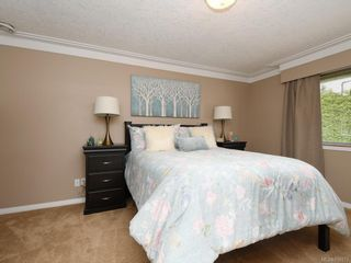Photo 7: 1136 Lucille Dr in Central Saanich: CS Brentwood Bay House for sale : MLS®# 838973