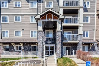 Photo 9: 4213 115 Prestwick Villas SE in Calgary: McKenzie Towne Apartment for sale : MLS®# A1143848