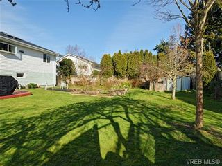 Photo 8: 333 Stannard Ave in VICTORIA: Vi Fairfield West House for sale (Victoria)  : MLS®# 723018