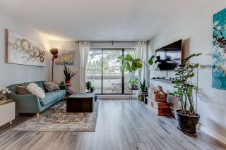 """Photo 3: 408 1210 PACIFIC Street in Coquitlam: North Coquitlam Condo for sale in """"Glenview Manor"""" : MLS®# R2544573"""