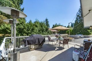 Photo 14: 20581 GRADE Crescent in Langley: Langley City House for sale : MLS®# R2219346