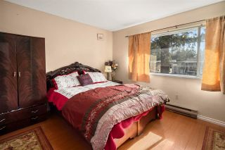 Photo 15: 11940 84A Avenue in Delta: Annieville House for sale (N. Delta)  : MLS®# R2569046
