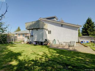Photo 18: 3246 Irma St in VICTORIA: SW Rudd Park House for sale (Saanich West)  : MLS®# 785071