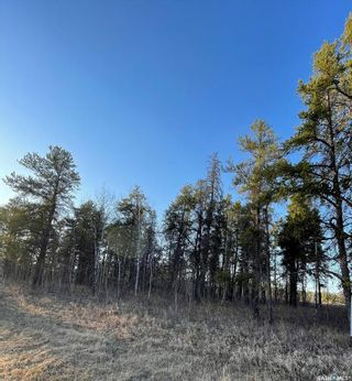 Photo 3: Over 1 acre lots in Hudson Bay: Lot/Land for sale : MLS®# SK850476