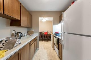 Photo 6: 210 377 Dogwood St in : CR Campbell River Central Condo for sale (Campbell River)  : MLS®# 886108