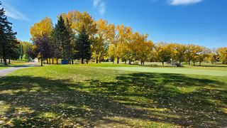 Photo 32: 3204 15 Street NW in Calgary: Collingwood Detached for sale : MLS®# A1149979