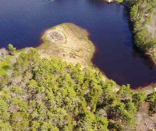 Photo 2: Lot 11 RAFUSE POINT Road in Pleasantville: 405-Lunenburg County Vacant Land for sale (South Shore)  : MLS®# 202100151