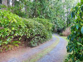 Photo 8: 2892 Fishboat Bay Rd in : Sk French Beach House for sale (Sooke)  : MLS®# 863163