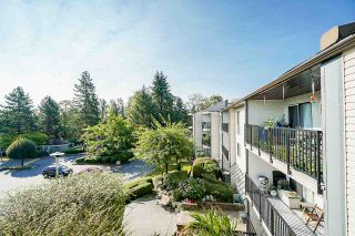 """Photo 26: 302 9952 149 Street in Surrey: Guildford Condo for sale in """"TALL TIMBERS"""" (North Surrey)  : MLS®# R2492246"""