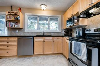 Photo 19: 22 BALMORAL Drive: St. Albert House for sale : MLS®# E4239500