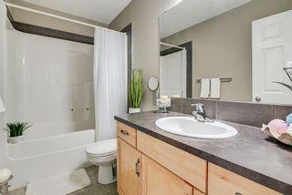 Photo 30: 3441 28 Street in Edmonton: Zone 30 House for sale : MLS®# E4248007