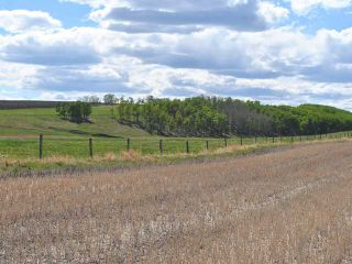 Photo 20: Range Road 41: Rural Mountain View County House for sale : MLS®# C3641299