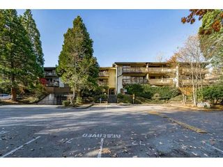 "Photo 1: 207 14935 100 Avenue in Surrey: Guildford Condo for sale in ""Forest Manor"" (North Surrey)  : MLS®# R2564418"
