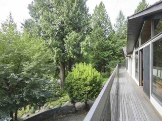 Photo 8: 4645 CAULFEILD Drive in West Vancouver: Caulfeild House for sale : MLS®# R2607528