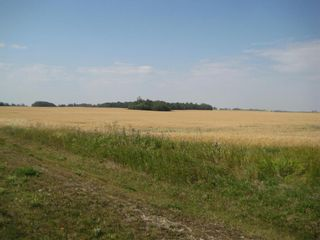 Photo 6: SE 20 30 1 W5 Highway 2A: Carstairs Residential Land for sale : MLS®# A1067588