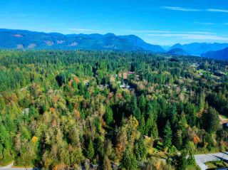 Photo 1: 30255 BRACKLEY Avenue in Mission: Stave Falls Land for sale : MLS®# R2527114