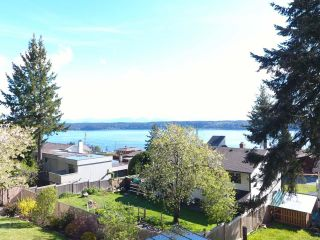 Photo 41: 395 S Alder St in CAMPBELL RIVER: CR Campbell River Central House for sale (Campbell River)  : MLS®# 838408