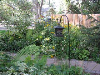 Photo 14: 828 8TH Avenue North in SASKATOON: City Park (Area 03) Single Family Dwelling for sale (Area 03)  : MLS®# 319320