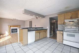 Photo 17: 766 Coral Springs Boulevard NE in Calgary: Coral Springs Detached for sale : MLS®# A1136272