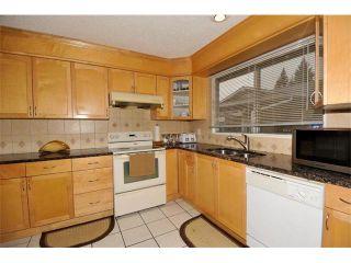 Photo 12: 3307 48 Street NE in Calgary: Whitehorn House for sale : MLS®# C4003900
