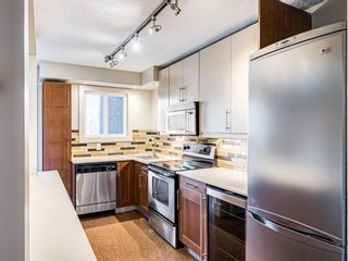 Photo 12: 202 1603 26 Avenue SW in Calgary: South Calgary Apartment for sale : MLS®# A1100163