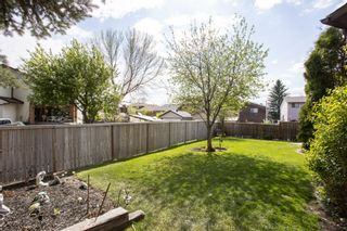 Photo 32: 31 Mchugh Place NE in Calgary: Mayland Heights Detached for sale : MLS®# A1111155