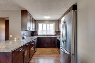 Photo 8: 11 Bedwood Place NE in Calgary: Beddington Heights Detached for sale : MLS®# A1100658