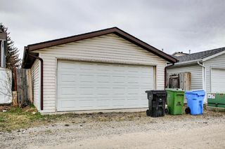 Photo 41: 142 Martindale Boulevard NE in Calgary: Martindale Detached for sale : MLS®# A1111282