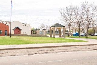 Photo 46: 17731 94 Street in Edmonton: Zone 28 House for sale : MLS®# E4244788