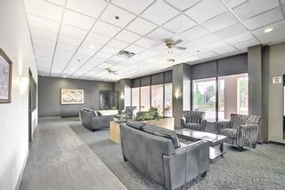 Photo 23: 212 8604 48 Avenue NW in Calgary: Bowness Apartment for sale : MLS®# A1138571