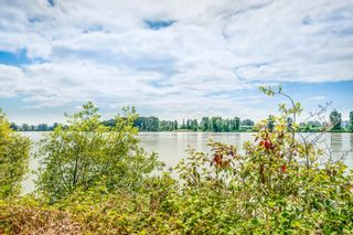 """Photo 31: 55 11067 BARNSTON VIEW Road in Pitt Meadows: South Meadows Townhouse for sale in """"COHO 1"""" : MLS®# R2603358"""