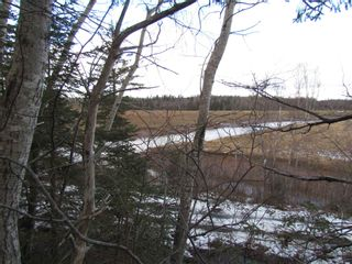 Photo 4: 2127 Highway 236 in Mosherville: 403-Hants County Vacant Land for sale (Annapolis Valley)  : MLS®# 202100967
